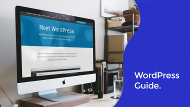 WordPress Setup Guide